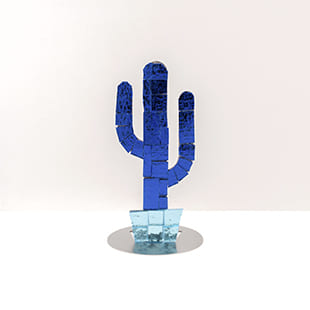 cactus mini california blue